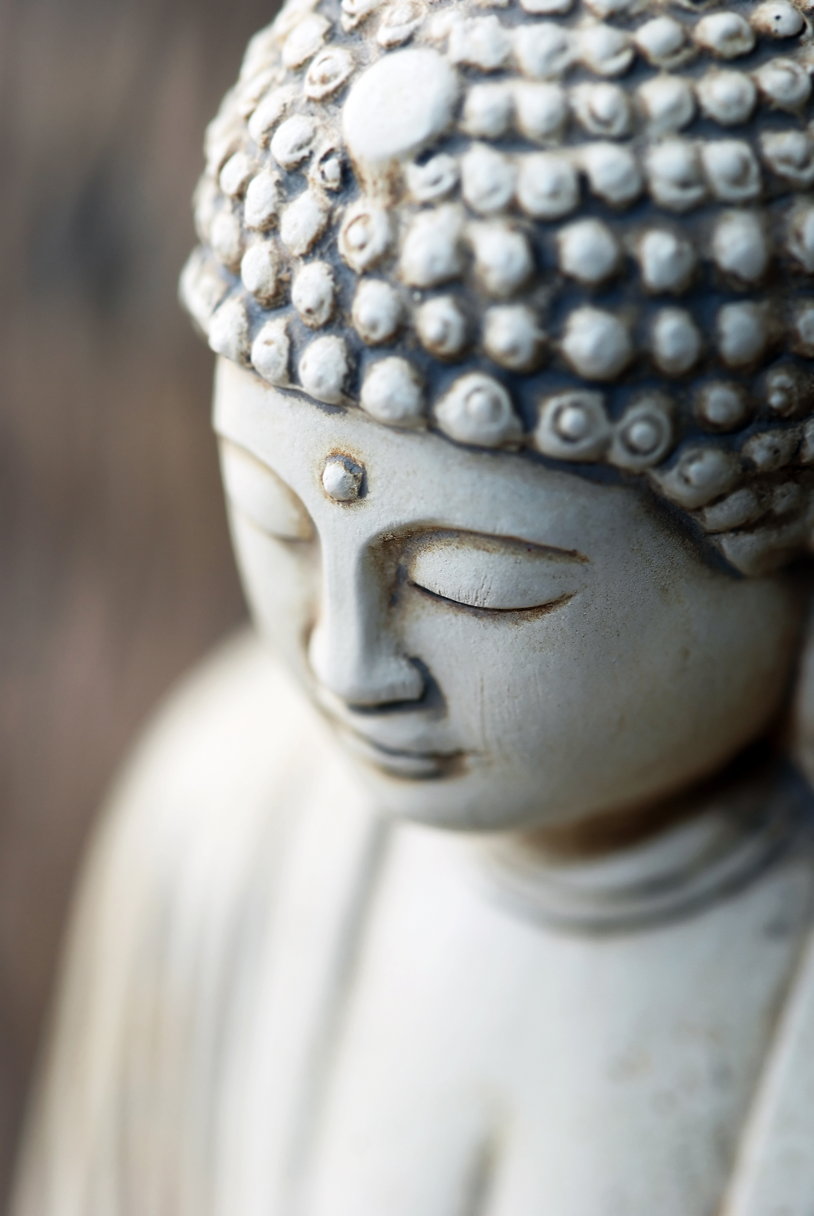 meditativ yoga sofia lune